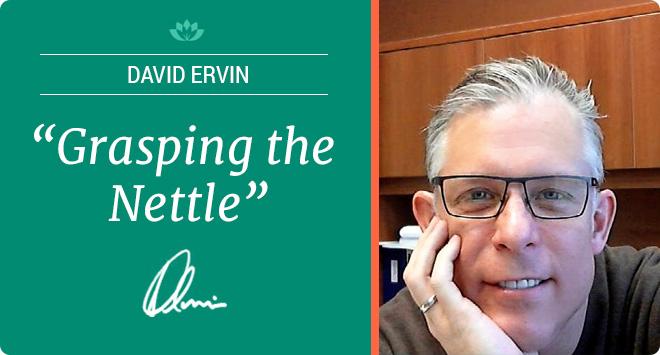 David Ervin - Grasping the Nettle
